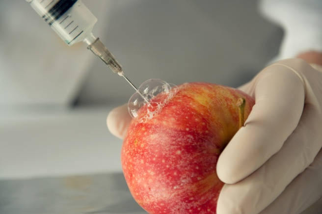 Sweet apple, genetic engineering